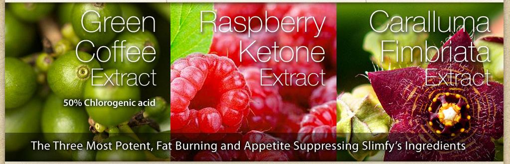 slimfy sales 5 berry ingredients